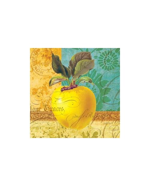 Daržovės,vaisiai,uogos 25x25cm