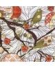 Gyvūnai,paukščiai 33x33