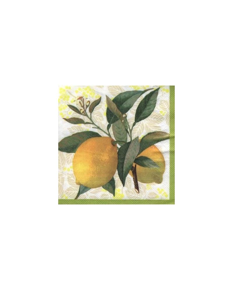 Daržovės,vaisiai,uogos 33x33