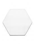 Šilko paveikslėlis, šešiakampis 20cm
