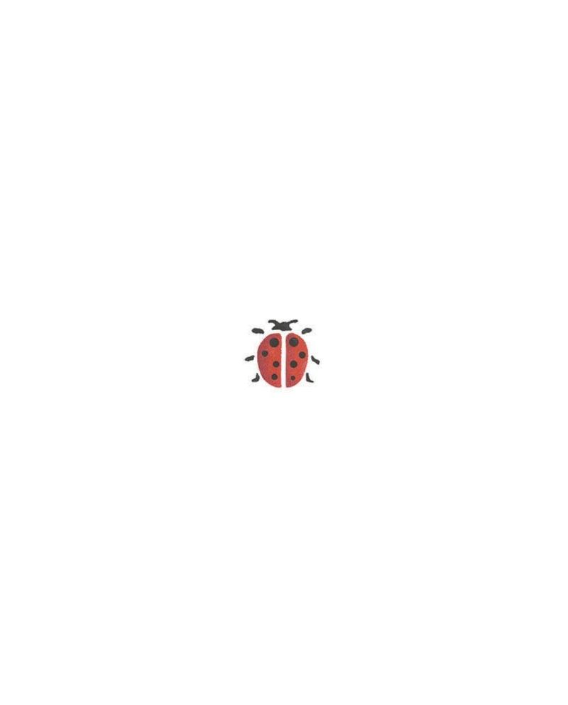 Trafaretai 7x10cm Ladybird