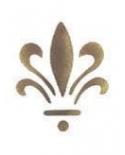 Trafaretas 7x10cm Stilizuota lelija 2 (Lily sign1)