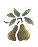 Trafaretas 7x10cm Kriaušės (Pears)