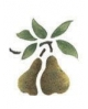 Trafaretai 7x10cm Pears