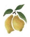 Trafaretas 7x10cm Citrinos (Lemons)