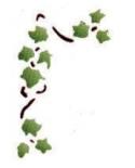 Trafaretas 13 x 16cm Gebenė (Ivy cirrus)