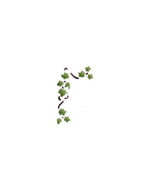 Trafaretai 13 x 16cm Ivy cirrus