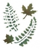 Trafaretai 18 x 24cm Fern leaves