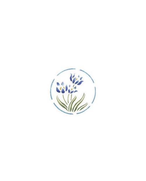 Trafaretas 18 x 24cm Rugiagėlės (Blue star)