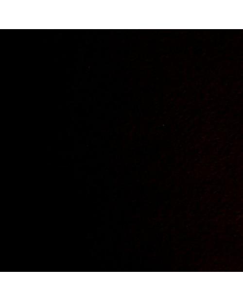 Filcas juoda